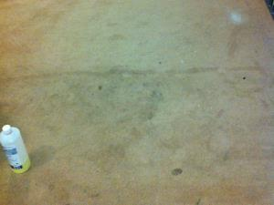 Carpet Cleaning (1 of 2) - A heavily stained carpet in need of cleaning at a retirement home in Blackburn